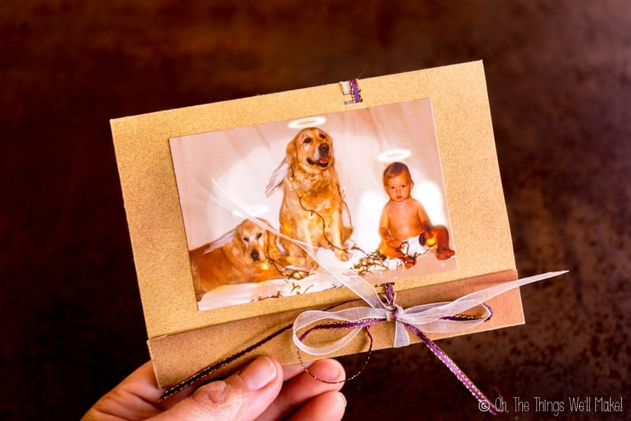 A Christmas card with a photo of a baby with 2 golden retrievers, all with halos over their heads.