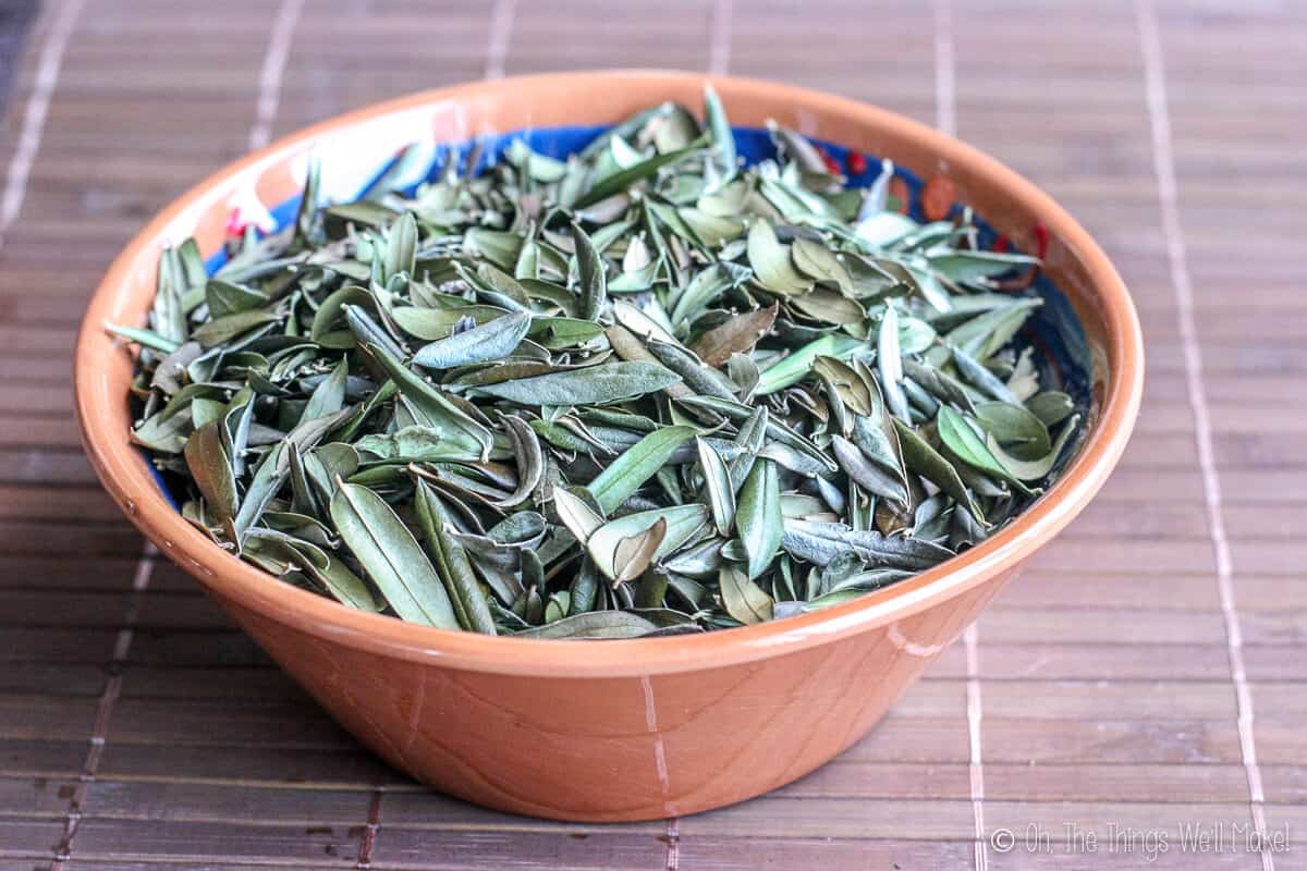 A bowl of olive leaves ready for making into herbal tea.