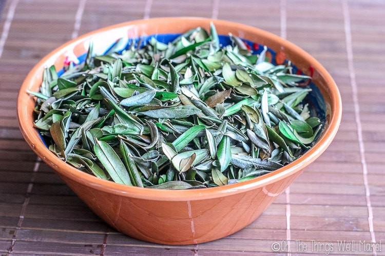 bowl of olive leaves ready for making into herbal tea
