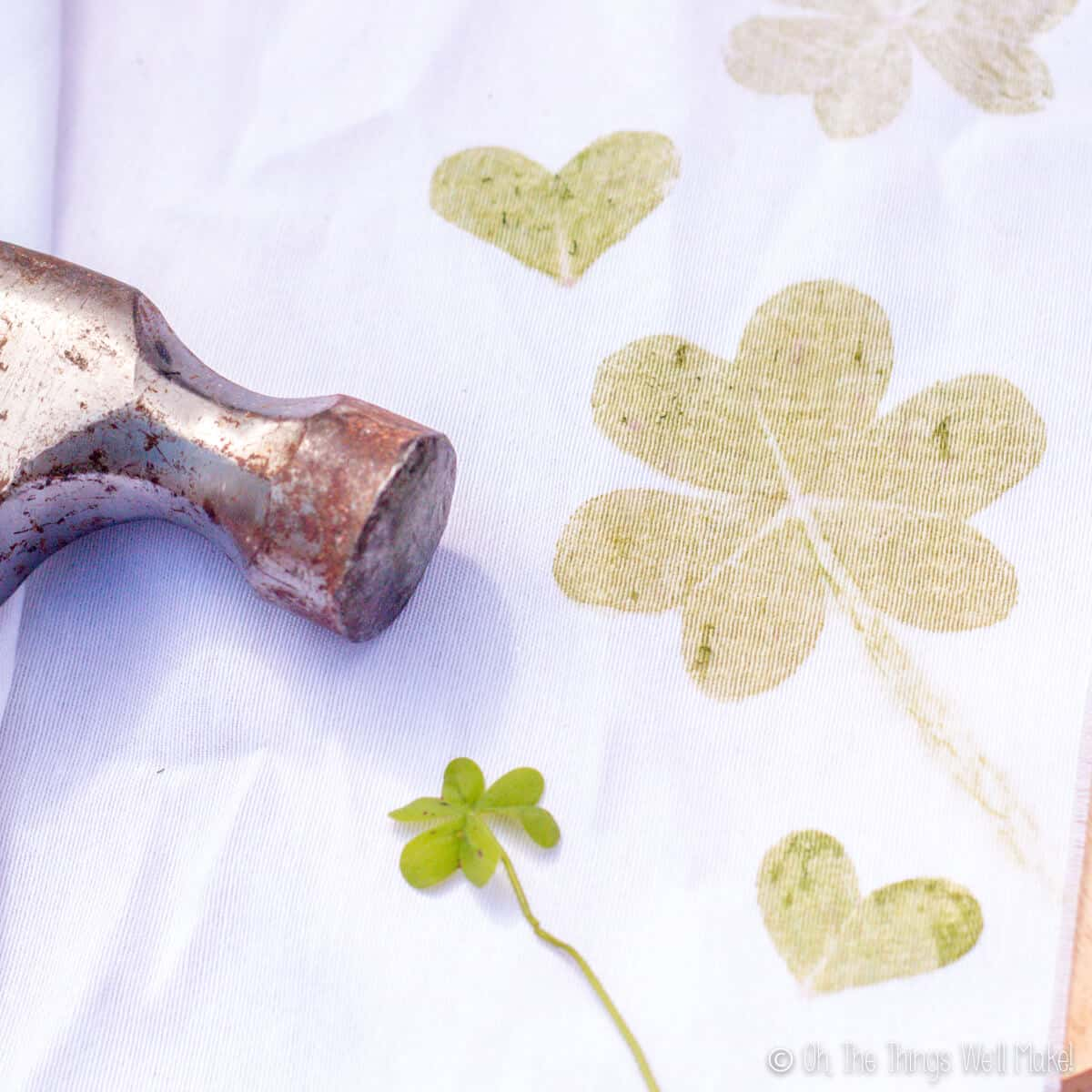 Closeup of a clover on a white cloth that has been covered with prints made by hammering clovers onto the cloth.