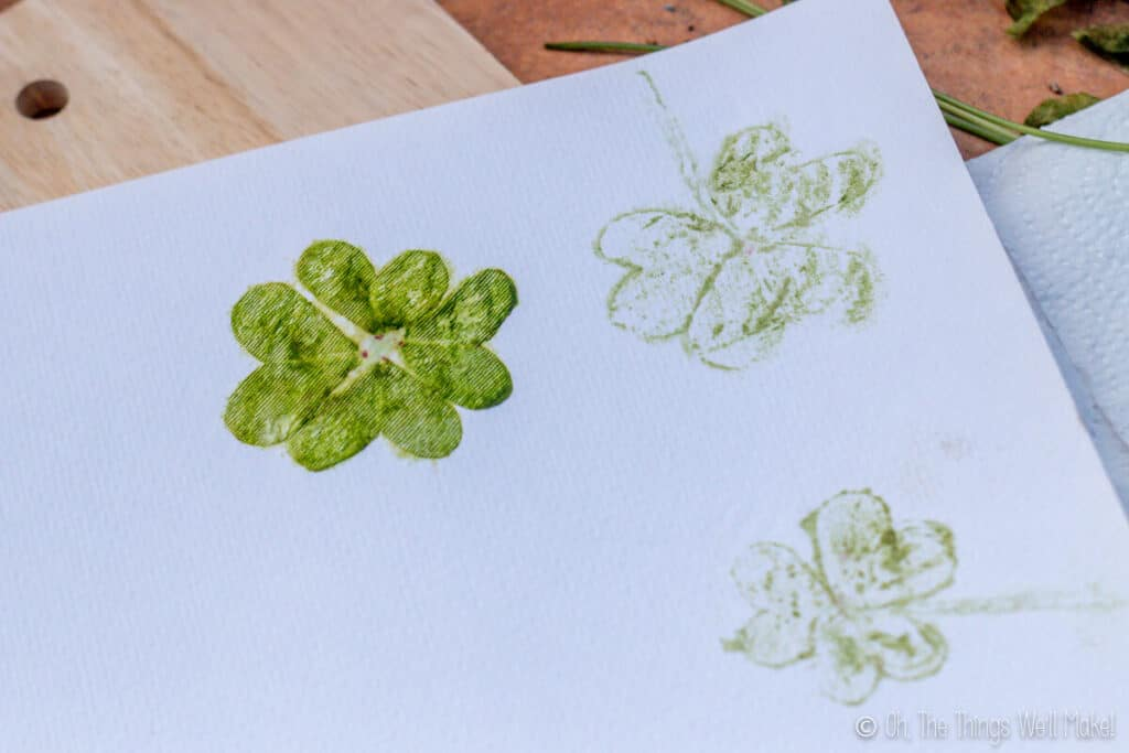 Resulting print made from hammering 4 clover leaves onto absorbent paper (like watercolor paper)