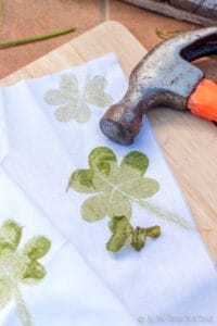 After lifting off the top fabric, some of the clover is sticking to the cloth. You can see the vivid print made by the leaves on the fabric.