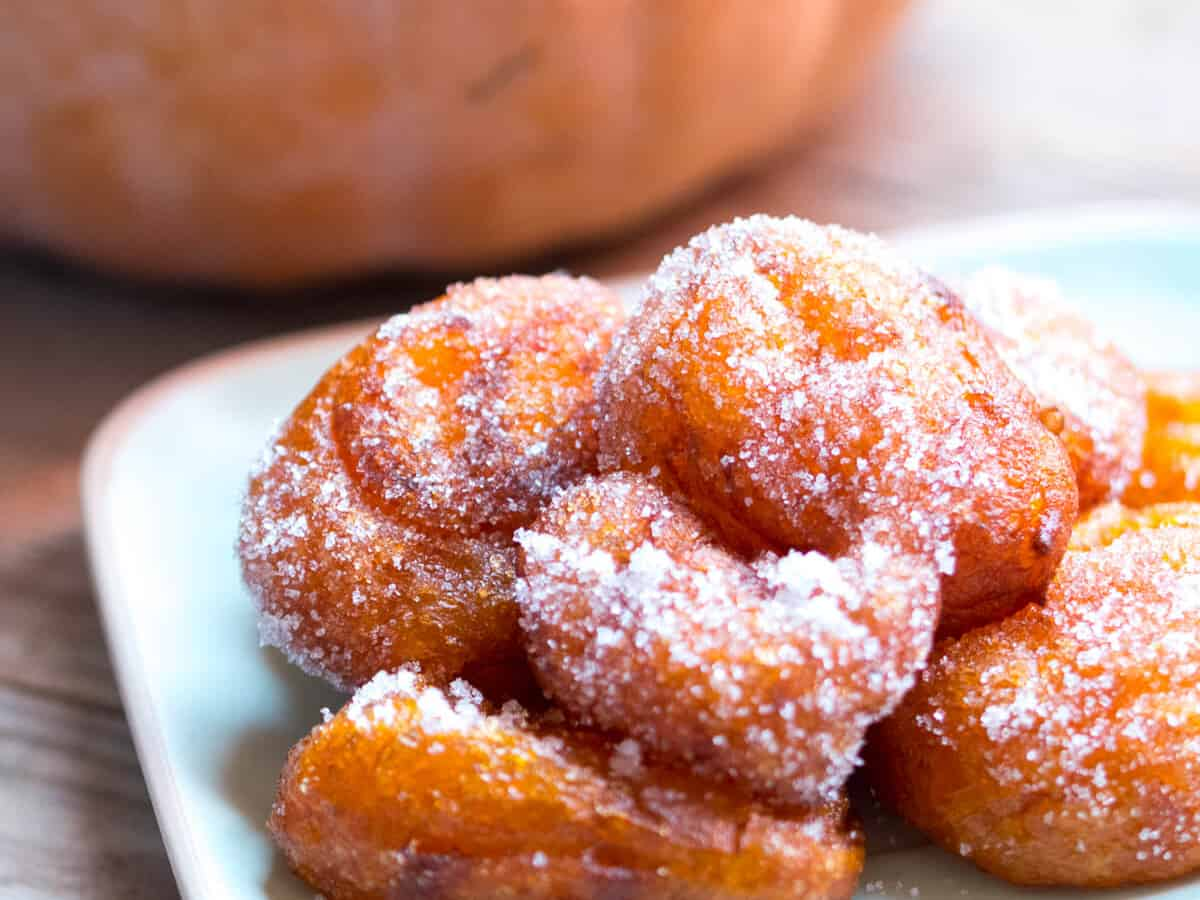 A closeup of a plate of pumpkin fritters covered with sugar.