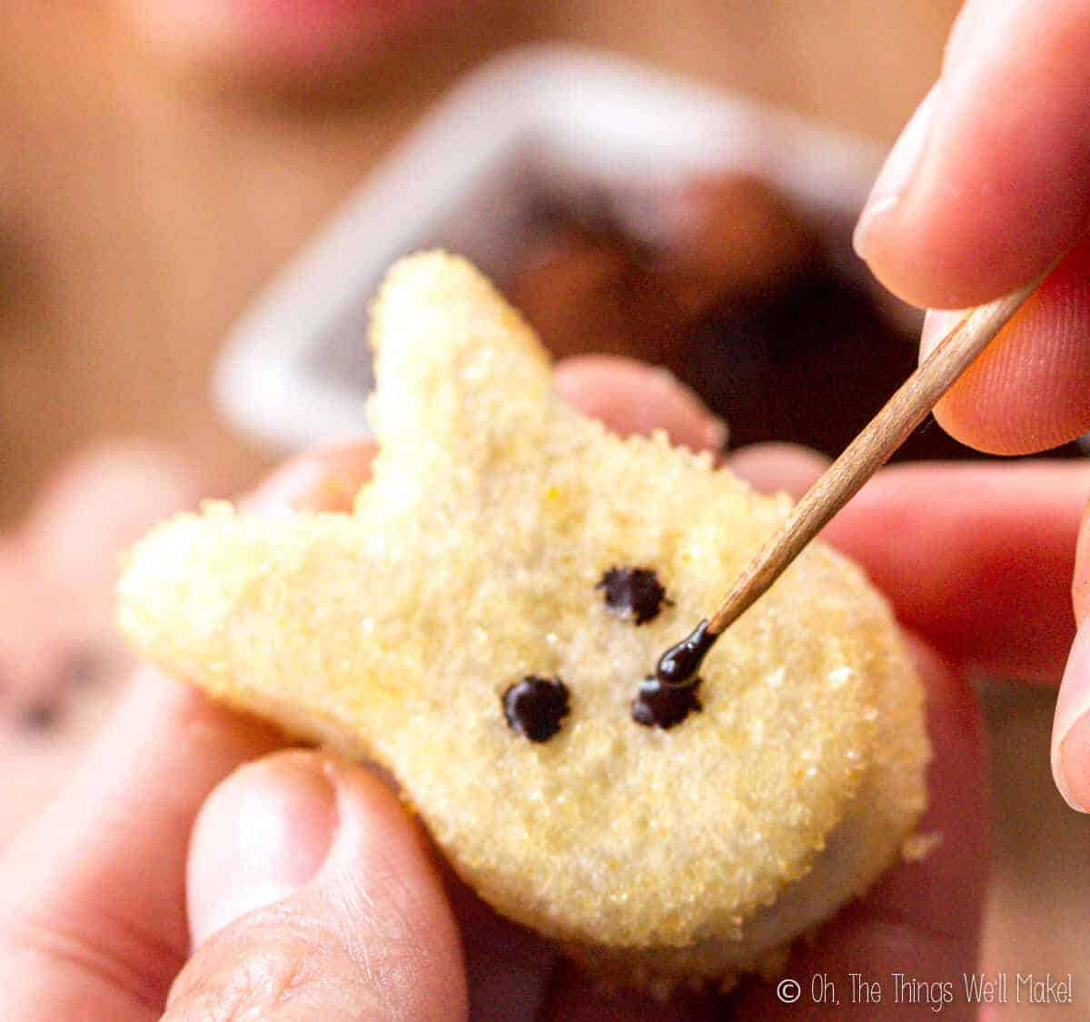 Closeup of using a toothpick to paint on the cocoa eyes and nose to a bunny shaped homemade marshmallow peep