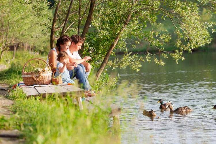 A family having a picnic by a lake with ducks in it.