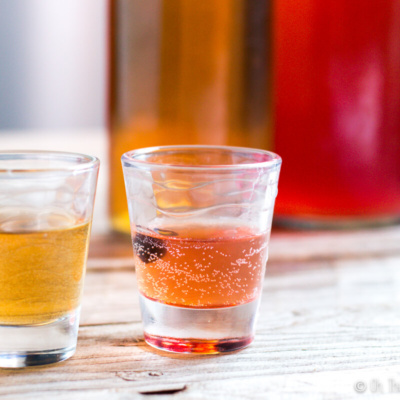 Two shot glasses filled with different flavors of kombucha in front of 2 glass bottles of kombucha