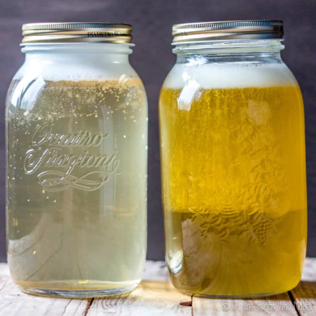 Two jars of homemade liquid soap: one coconut oil based and one olive oil based. The olive oil based soap is becoming more opaque.