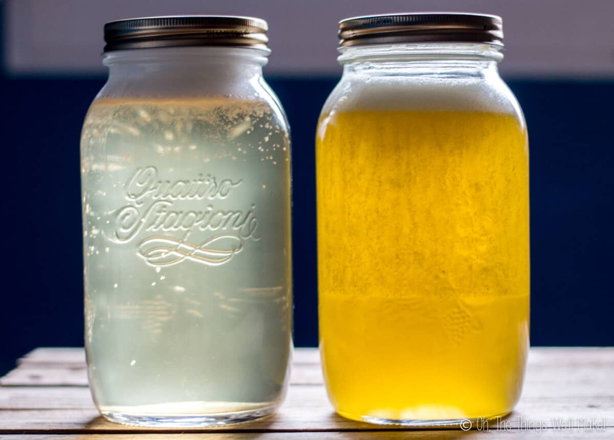 Two jars of homemade liquid soap: one coconut oil based and one olive oil based.