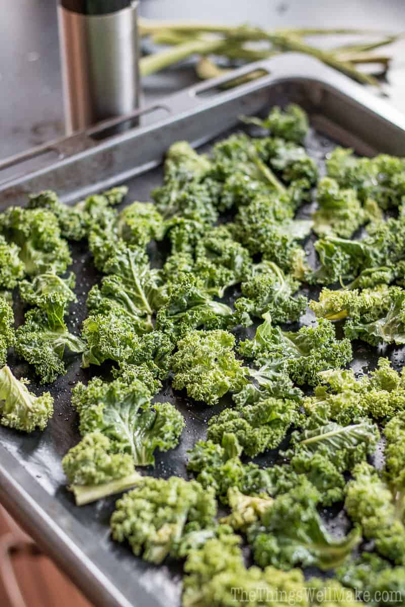 Best Crispy Kale Chips RecipeOh, The Things Well Make!