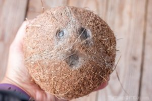 How to Choose a Coconut and How to Open it