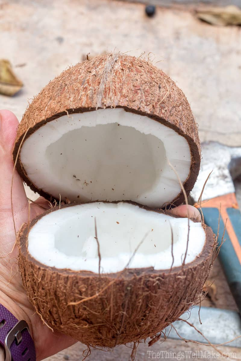 Buying fresh coconuts can be intimidating and frustrating when you choose the wrong one. Let me show you how to choose a coconut that is fresh, and how to open it easily.