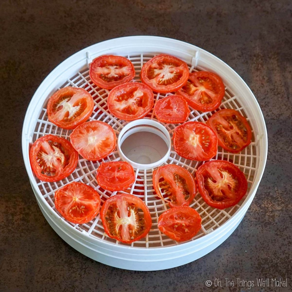 Slightly dried tomato slices on a food dehydrator tray.