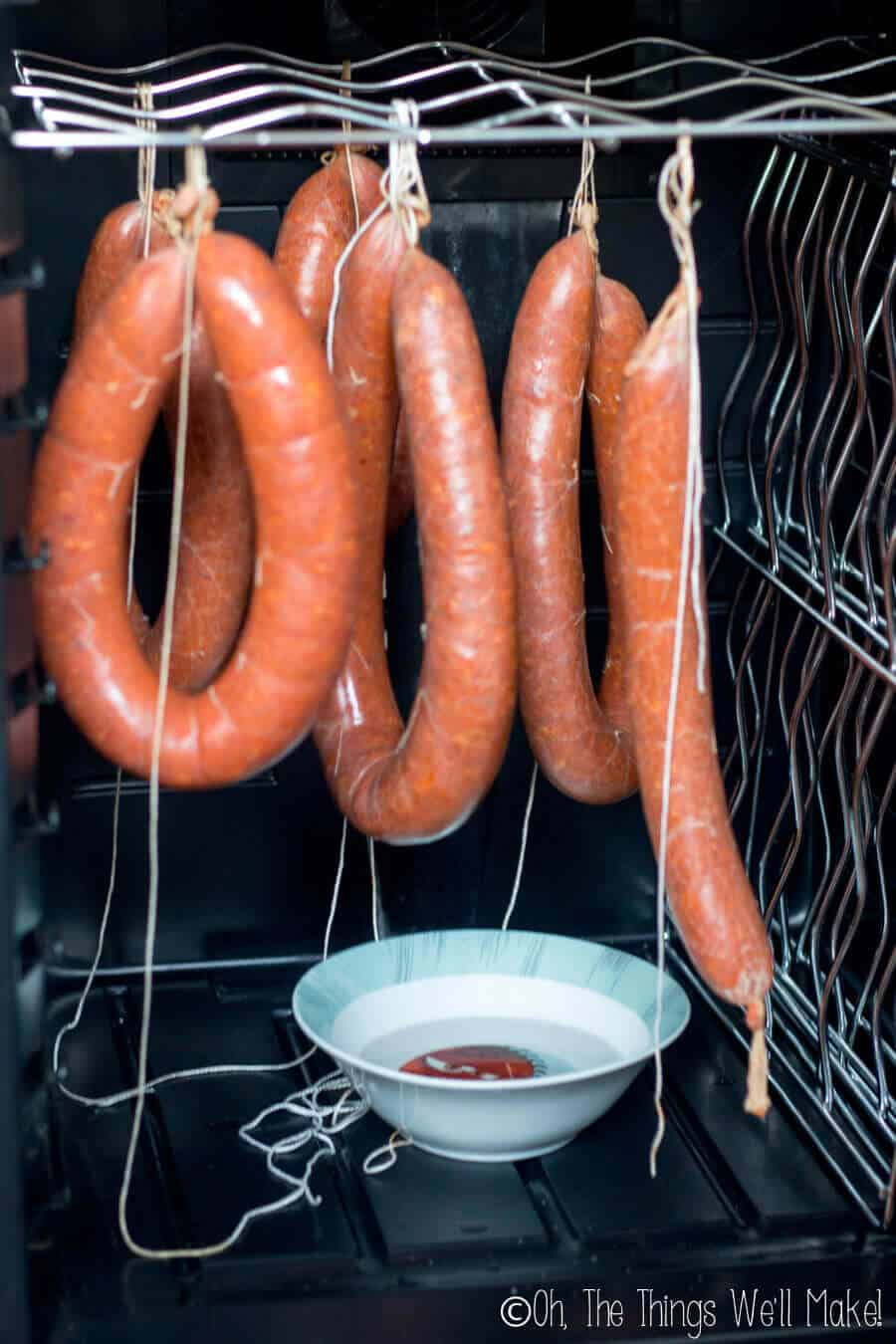 homemade chorizo being hung in a small refrigerator with a bowl of water underneath for humidity