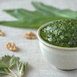 stinging nettle and ramps pesto