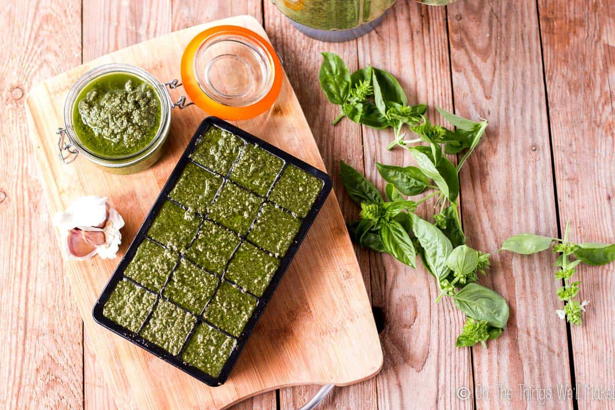 overhead view of homemade pesto sauce in a jar and in ice cube trays