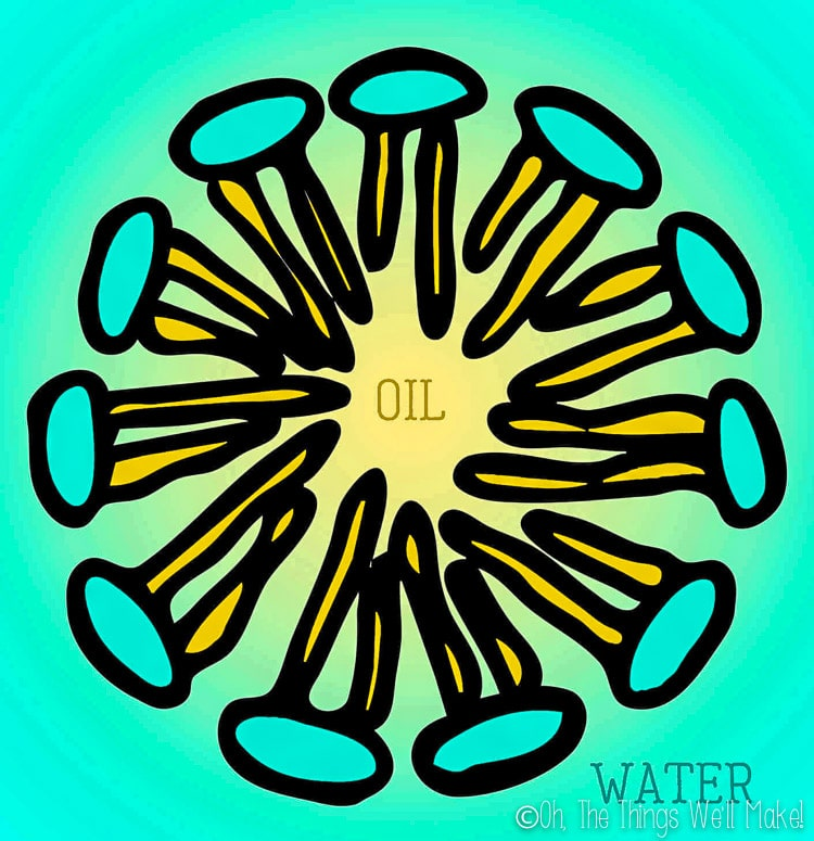 drawing depiction of a micelle, with oil in the center and water around it.