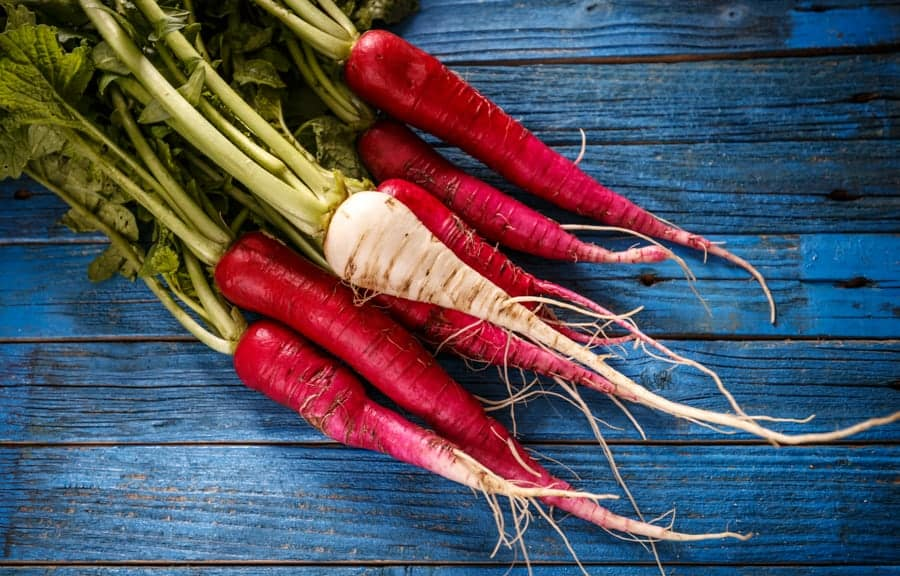 A bunch of radishes on a blue wood background