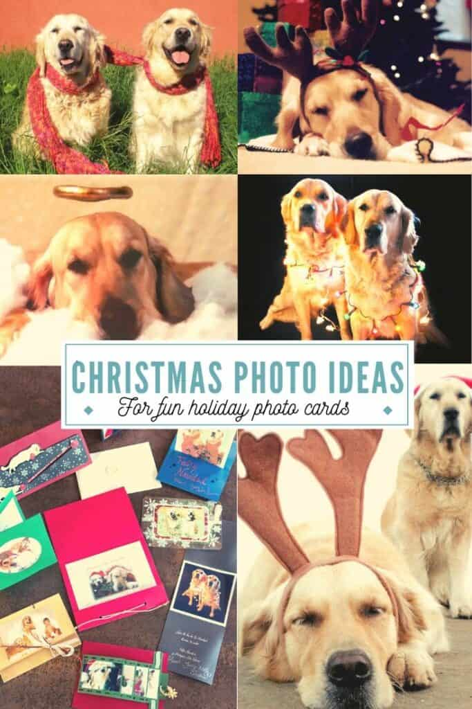 Christmas Card Photo Ideas Oh The Things We Ll Make