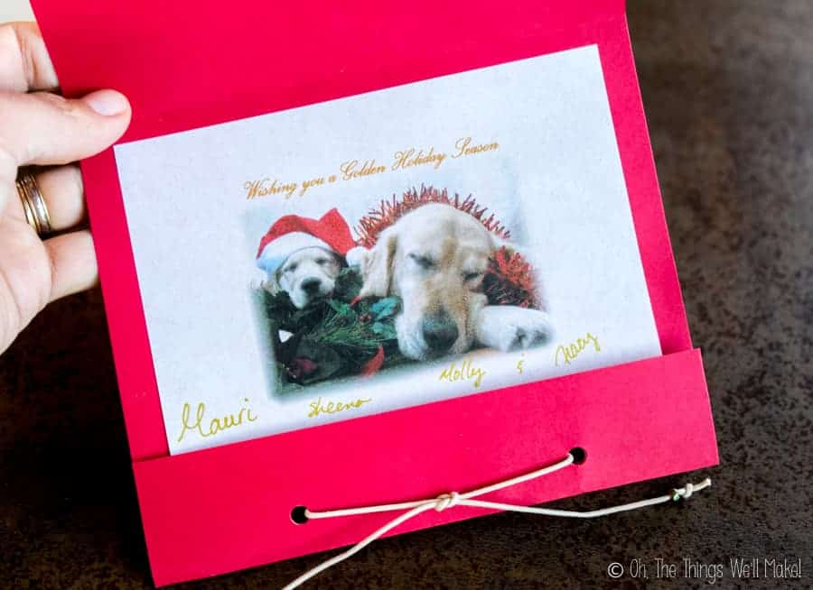 A handmade card with a photo of two golden retrievers dressed up for Christmas.