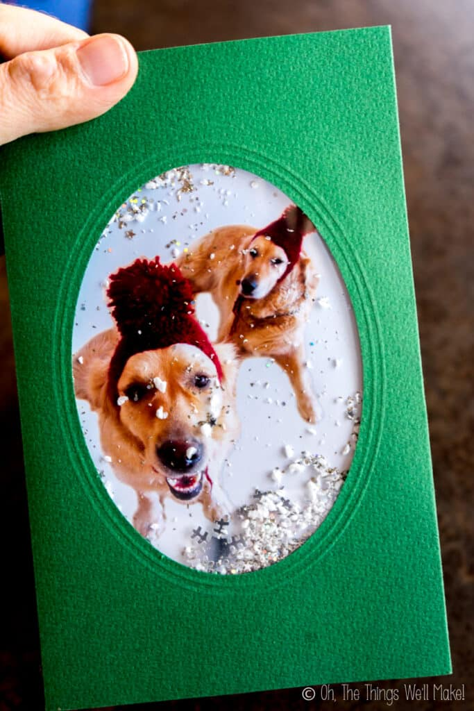 "A green snowglobe card with a photo of two dogs in ski caps as the background image. The card is filled with white and silver glitter ""snow."""