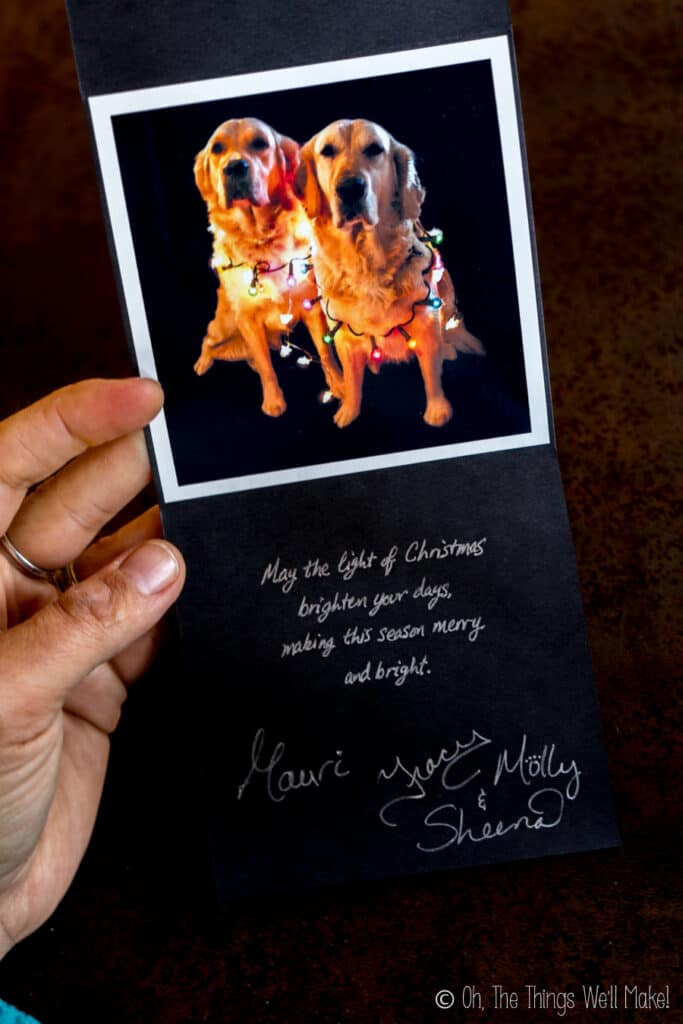 A black homemade card with 2 dogs wrapped in lit Christmas lights. Inside, a greeting is written in silver writing.