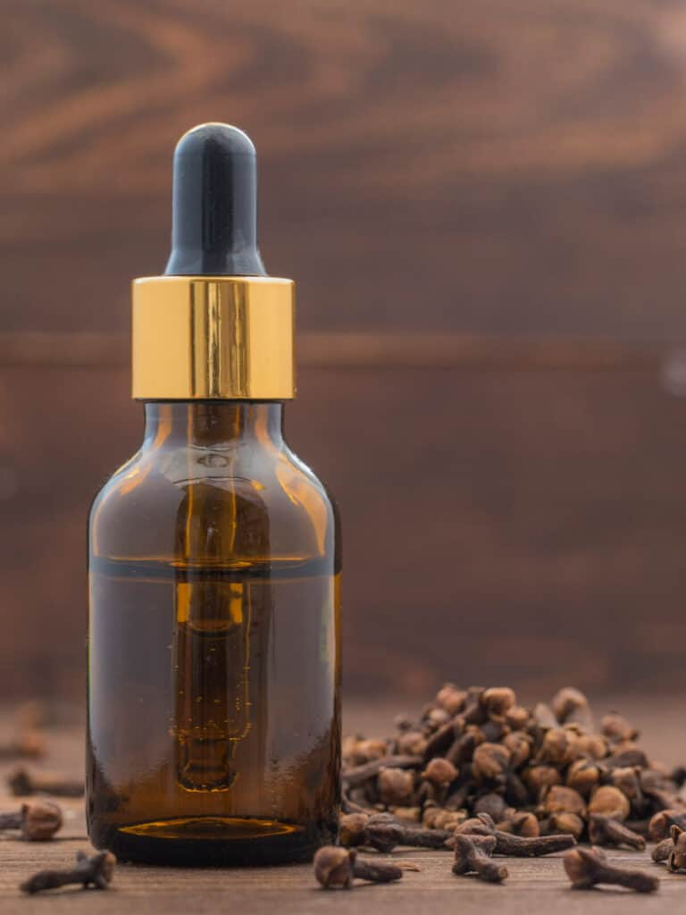 An amber bottle of clove essential oil surrounded by cloves.