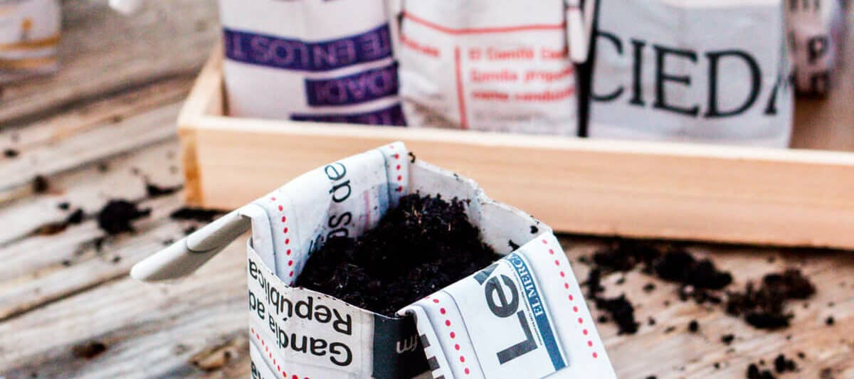 A closeup of an origami newspaper pot filled with soil in front of a tray filled with more soil-filled origami pots.