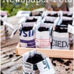 Make your own DIY origami flower pots for seedlings from recycled newspapers. They make great biodegradable pots that can be planted with your seedlings. They're quick to make and can be planted directly into the garden so as not to disturb the roots of seedlings. (And, yes, most newspapers use safe inks!) #origami #gardencrafts #garden #vegetablegarden #thethingswellmake #miy #upcycle #recycle