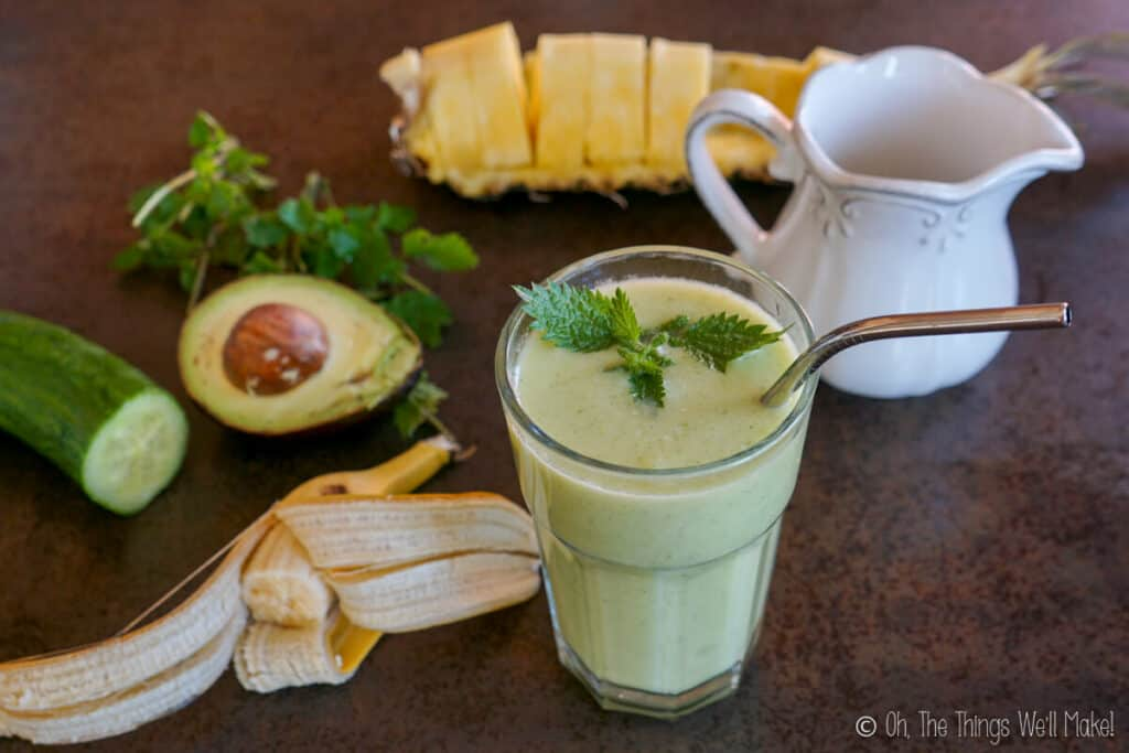 A green smoothie garnished with nettle leaves in front of a pitcher of coconut milk, and the fruits and other ingredients of the smoothie.