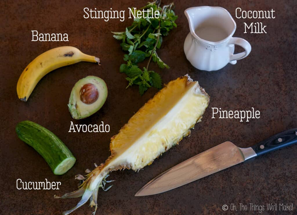 Overhead view of pineapple, avocado, banana, cucumber, stinging nettle, and coconut milk