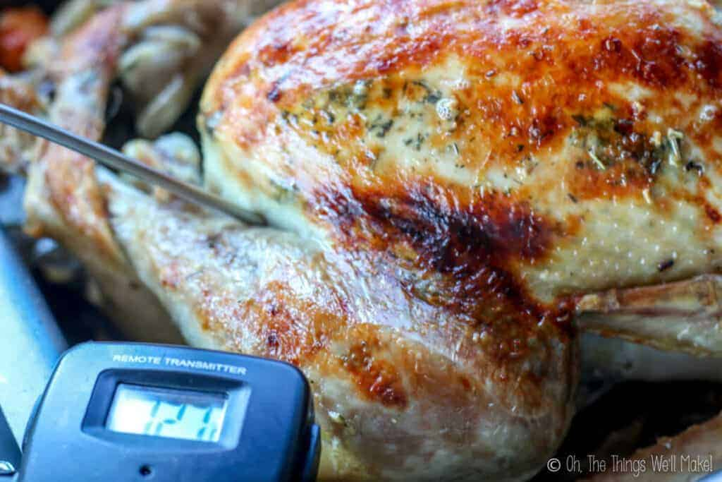 A roasted turkey with a thermometer poked into the thigh
