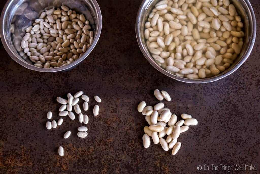 Two bowls with white beans. On the left, the beans are dried. On the right, the beans have been soaked overnight.