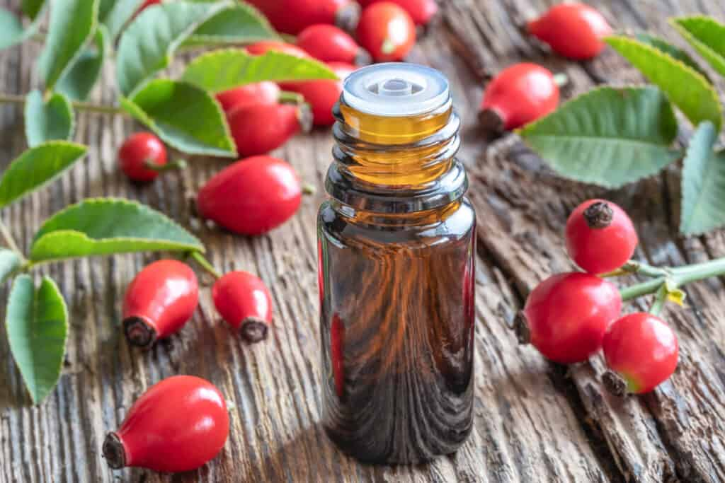A bottle of rosehip oil surrounded by rosehips