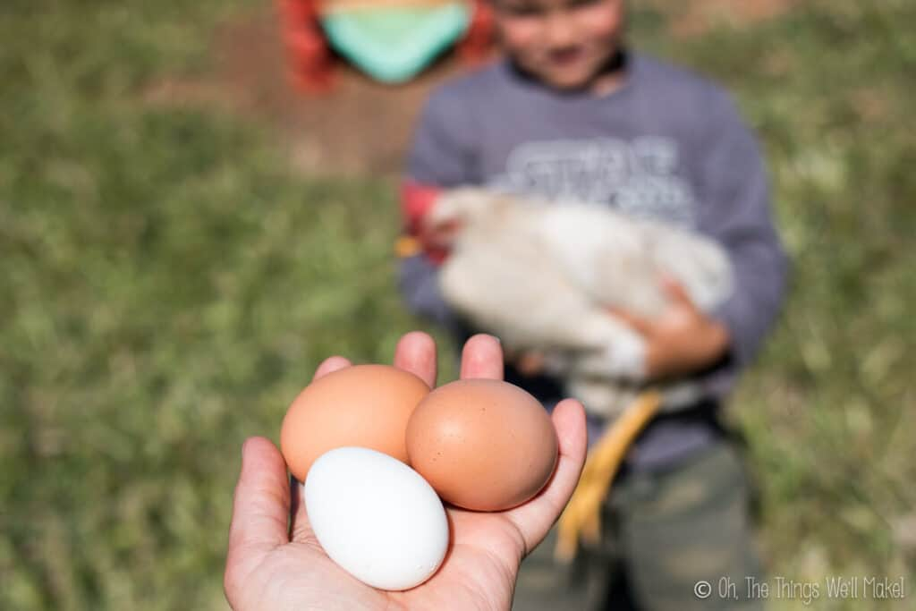 two brown eggs and one white egg in a girl's hand.