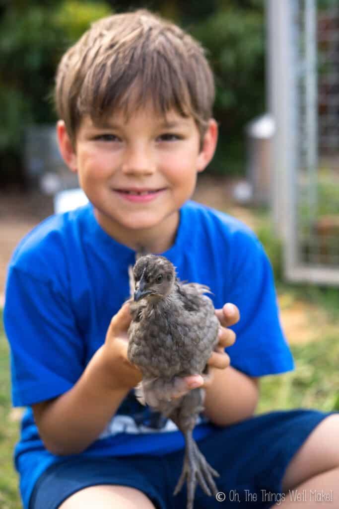 A boy holding a dark gray chick
