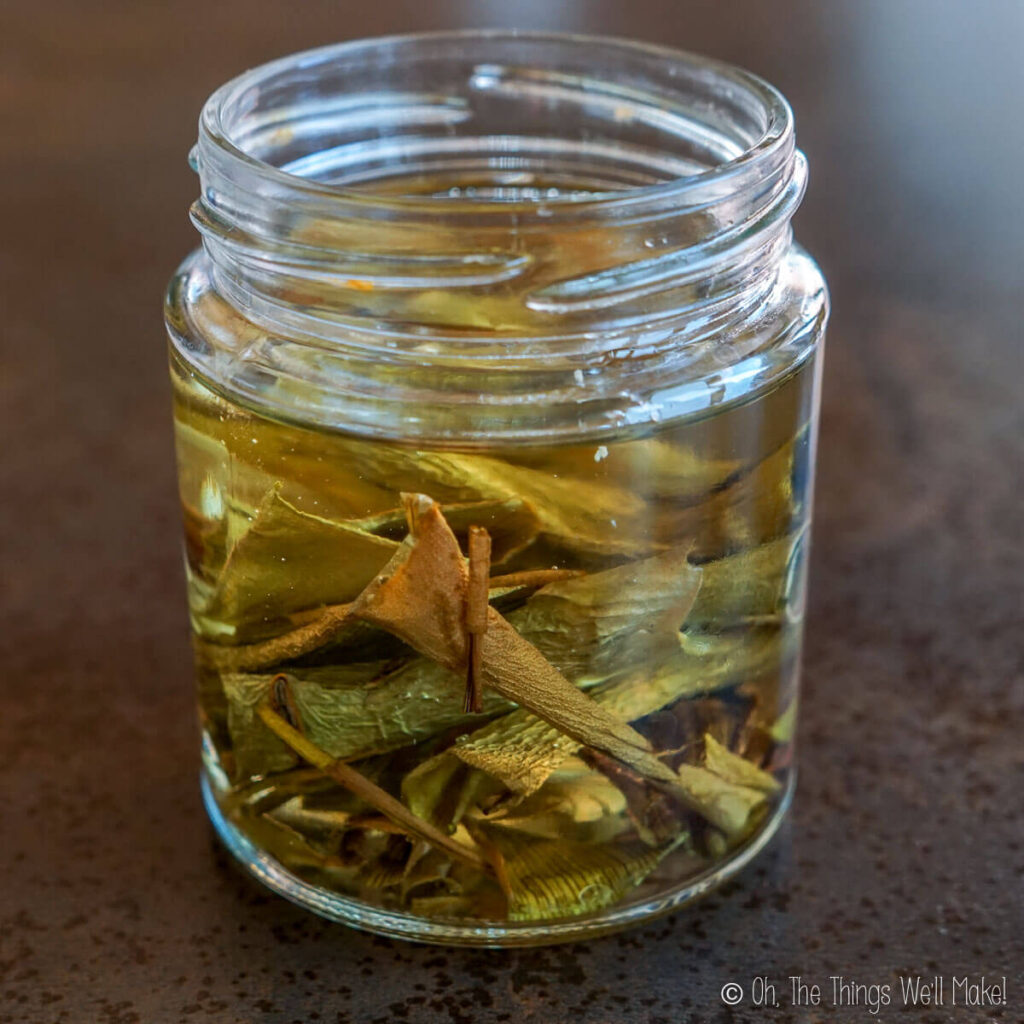 A glass jar with dry aloe leaf pieces in coconut oil