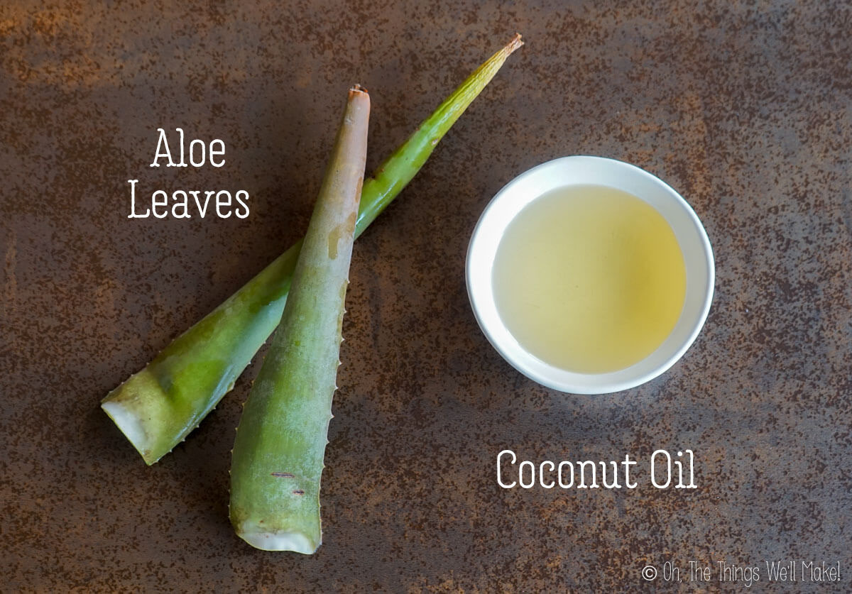 Aloe leaves and coconut oil